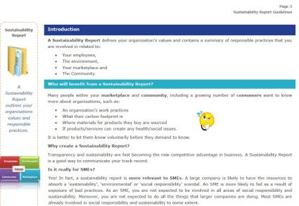Image of an excerpt from Sustainability Reporting Guidelines Manual